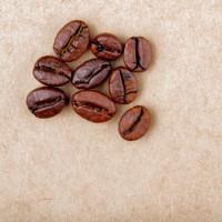 咖啡豆排肝毒抗氧SPA