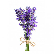 Lavender Oils 薰衣草純精油按摩