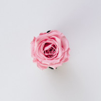 玫瑰香熏排水鎮靜SPA